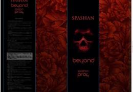 SPASHAN PRO4 beyond スパシャンプロ4 ビヨンド